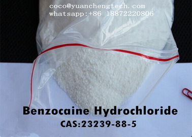 चीन Local Anesthetic Drugs Benzocaine Hydrochloride / Benzociane HCl USP Grade फैक्टरी